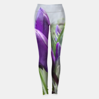 Miniature de image de buds of crocuses Legginsy, Live Heroes