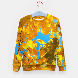 Thumbnail image of Autumn Veil Kid's sweater, Live Heroes