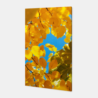 Thumbnail image of Autumn Veil Canvas, Live Heroes