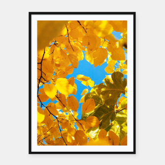 Thumbnail image of Autumn Veil Framed poster, Live Heroes