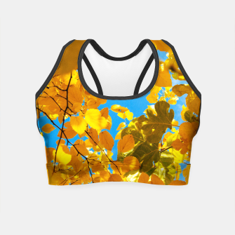 Thumbnail image of Autumn Veil Crop Top, Live Heroes