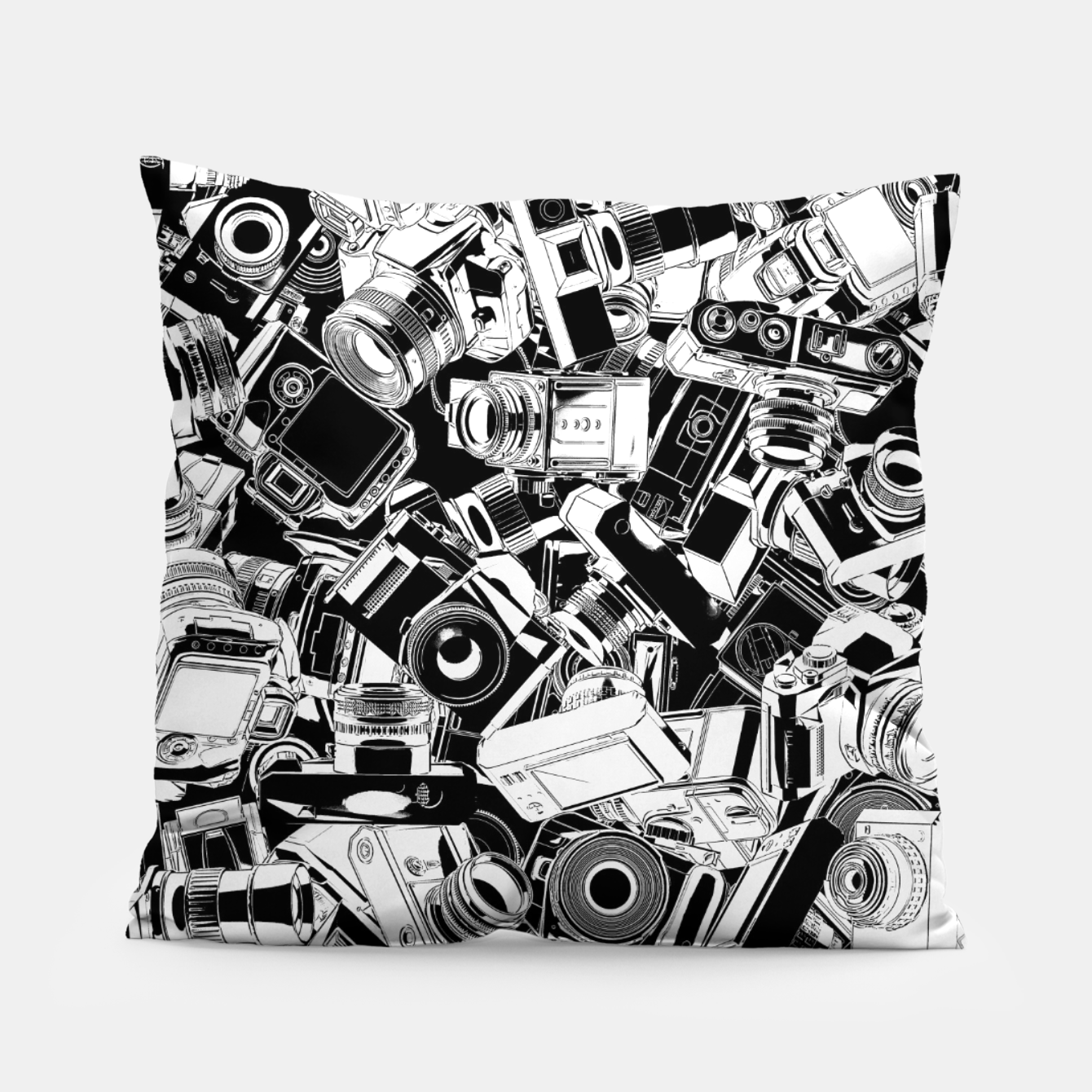 Image of Shutterbug Pillow - Live Heroes