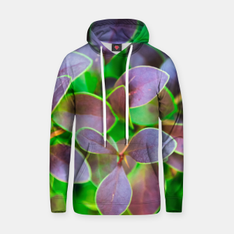 Vibrant green and purple leaves Cotton hoodie thumbnail image