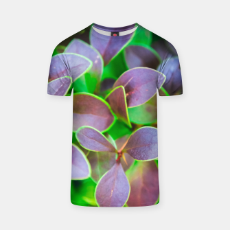Vibrant green and purple leaves T-shirt thumbnail image