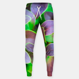 Vibrant green and purple leaves Cotton sweatpants thumbnail image