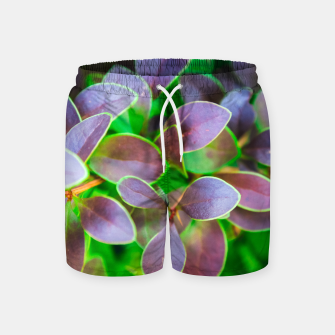 Vibrant green and purple leaves Swim Shorts thumbnail image