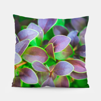 Thumbnail image of Vibrant green and purple leaves Pillow, Live Heroes