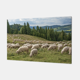 Thumbnail image of Sheep Canvas, Live Heroes