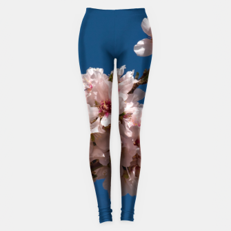 Thumbnail image of Spring Cherry Blossoms Leggings, Live Heroes