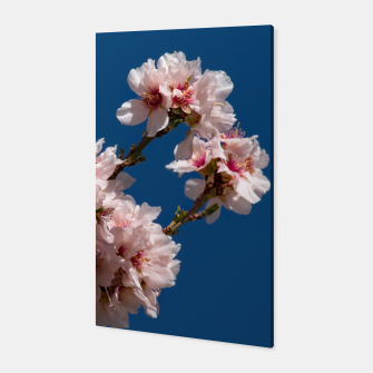 Thumbnail image of Spring Cherry Blossoms - A  Canvas, Live Heroes