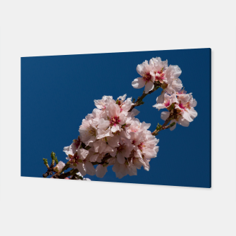 Thumbnail image of Spring Cherry Blossoms Canvas, Live Heroes