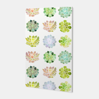 Thumbnail image of Spring Succulents Canvas, Live Heroes