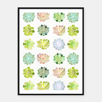 Thumbnail image of Spring Succulents Framed poster, Live Heroes