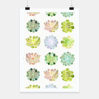 Thumbnail image of Spring Succulents Poster, Live Heroes