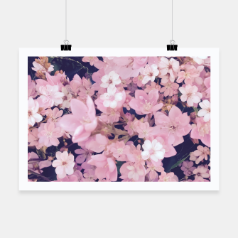 Thumbnail image of blossom blooming pink flower texture pattern abstract background Poster, Live Heroes