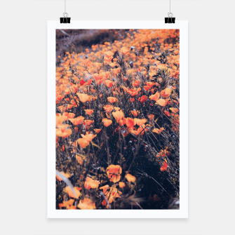 Thumbnail image of blooming yellow poppy flower field in California, USA Poster, Live Heroes