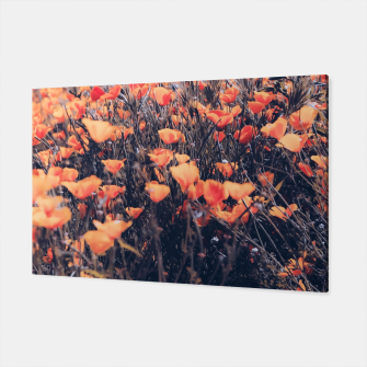 Thumbnail image of blooming yellow poppy flower field in California, USA Canvas, Live Heroes
