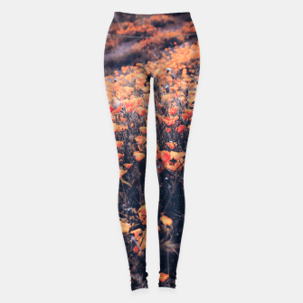 Miniatur blooming yellow poppy flower field in California, USA Leggings, Live Heroes