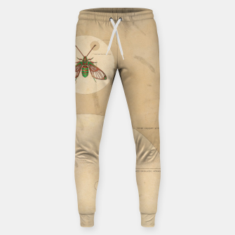 Miniaturka Sorority e.21081 Cotton sweatpants, Live Heroes