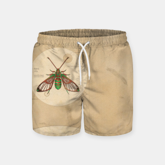 Miniaturka Sorority e.21081 Swim Shorts, Live Heroes