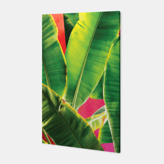Thumbnail image of Banana leaf with pink color #society6 Canvas, Live Heroes
