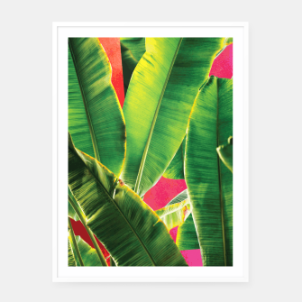 Thumbnail image of Banana leaf with pink color #society6 Framed poster, Live Heroes