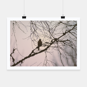 Miniatur Bird and branches Poster, Live Heroes