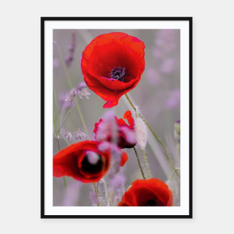 Miniature de image de poppies in the fog Plakaty w ramie , Live Heroes