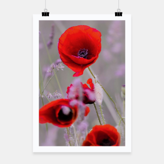 Miniature de image de poppies in the fog Plakat, Live Heroes