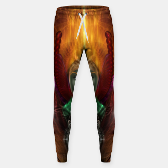 Thumbnail image of Riddian Queen Of Cosmic Fire Cotton sweatpants, Live Heroes