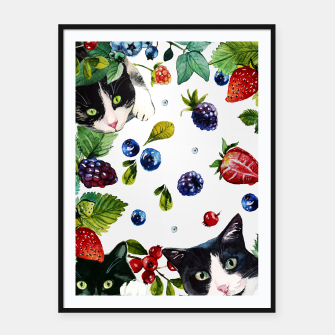 Cats and berries Framed poster Bild der Miniatur