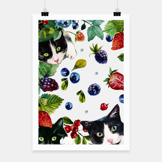 Miniatur Cats and berries Poster, Live Heroes
