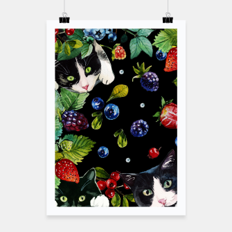 Thumbnail image of Cats and berries Poster, Live Heroes