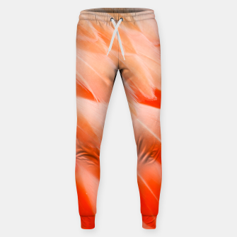 Thumbnail image of Pink Flamingo Feathers Cotton sweatpants, Live Heroes