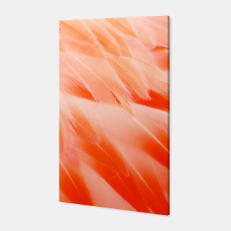 Thumbnail image of Pink Flamingo Feathers Canvas, Live Heroes
