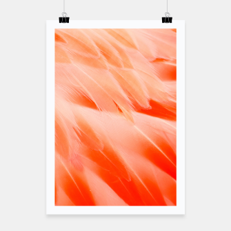 Thumbnail image of Pink Flamingo Feathers Poster, Live Heroes