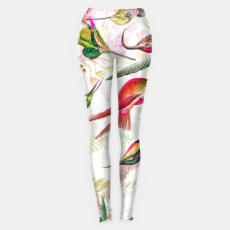 Haven Leggings thumbnail image