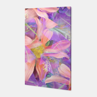 Thumbnail image of blooming pink daisy flower with purple flower background Canvas, Live Heroes