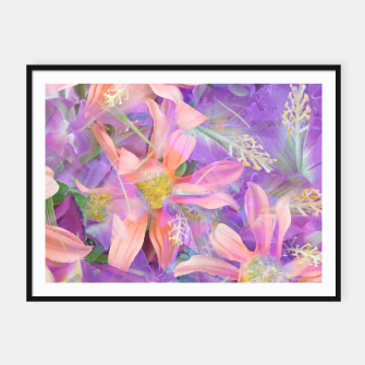 Thumbnail image of blooming pink daisy flower with purple flower background Framed poster, Live Heroes