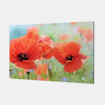 Miniaturka poppies in the meadow 170 Canvas, Live Heroes