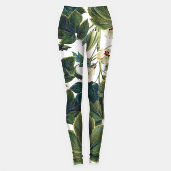 Thumbnail image of Wild Forest Leggings, Live Heroes