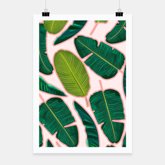 Thumbnail image of Banana Leaf Blush Poster, Live Heroes
