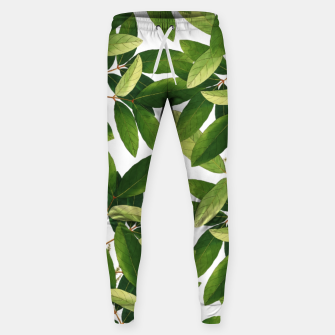 Thumbnail image of Greenery Cotton sweatpants, Live Heroes