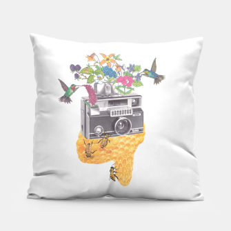 Miniatur Vintage Camera Pillow, Live Heroes