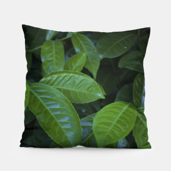 Thumbnail image of LEAF 3 Pillow, Live Heroes