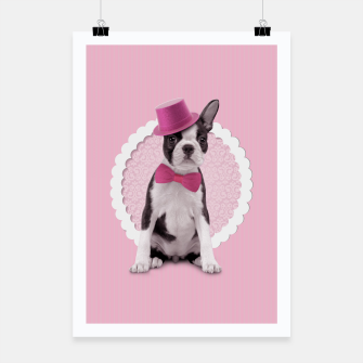 Thumbnail image of Boston Terrier Poster, Live Heroes