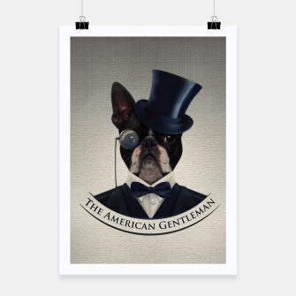 Thumbnail image of Boston Terrier dog Poster, Live Heroes