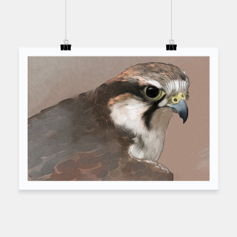 Thumbnail image of Hawk Poster, Live Heroes