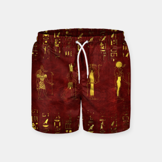 Miniatur Golden Egyptian Gods and hieroglyphics on red leather Swim Shorts, Live Heroes
