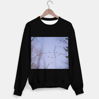 Miniatur Flying geese Sweater regular, Live Heroes